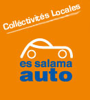 COLLECTIVITES LICALES